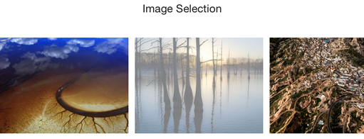 Image selection field